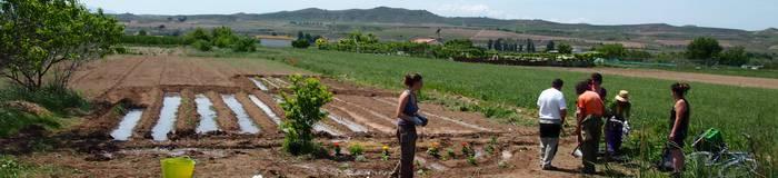 Baratze ekologikoen emakumeentzako tailerra eginen dute Zizurren