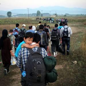'Migratzaileak gara' erakusketa, Zabalgunean