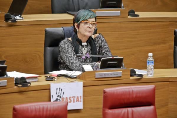 Ahal Dugu-ko zuzendaritza utzi du Tere Saez parlamentariak