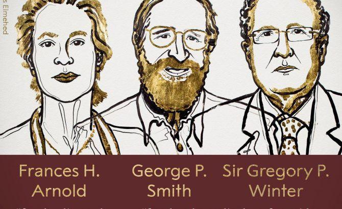 Kimikako Nobel saridunak