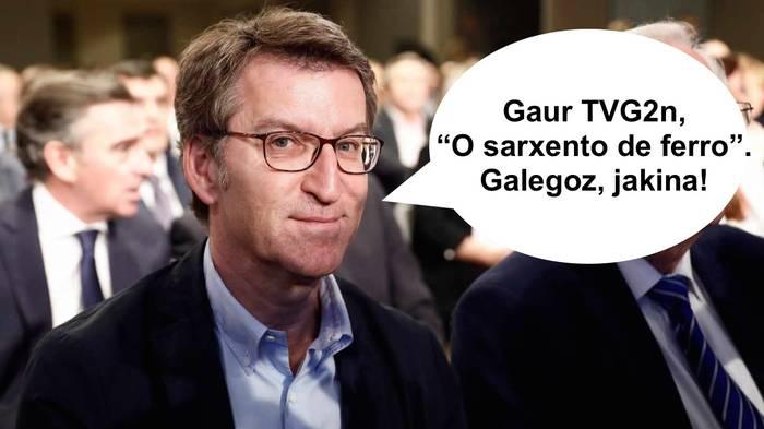 Galegoz, katalanez eta... Espaineraz
