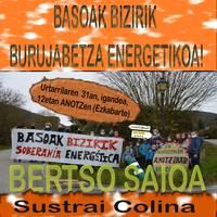 BERTSO SAIOA: Basoak bizirik, burujabetza energetikoa